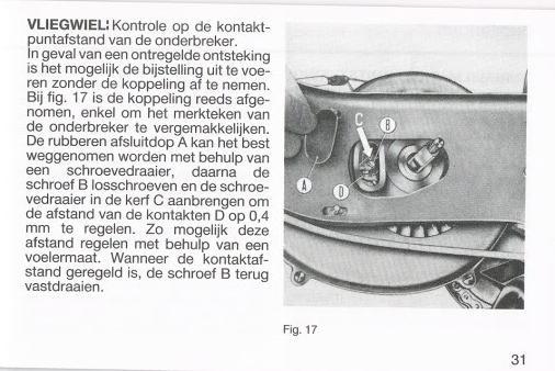 blz31